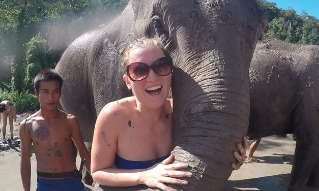 Why you should choose an Ethical Elephant Sanctuary with No Riding