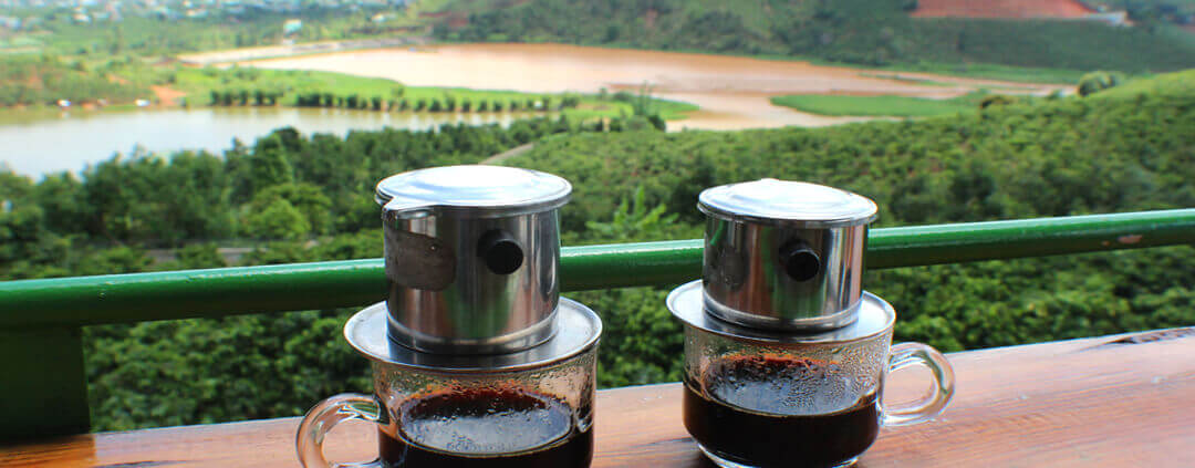 Dalat Coffee Plantation